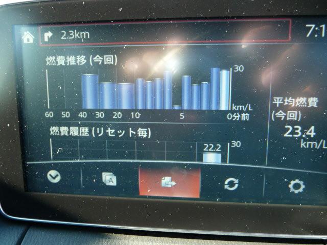 燃費モニターのグラフ