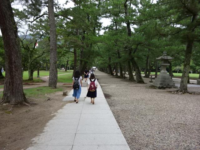 鉄の鳥居 松の参道